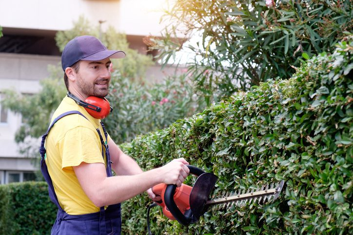 How to Hire a Landscaper in Tega Cay, SC